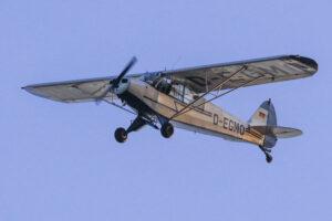 D-EGMO Piper Supercub PA-18-95