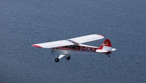 Piper PA-18-95 Supercub D-ENLH